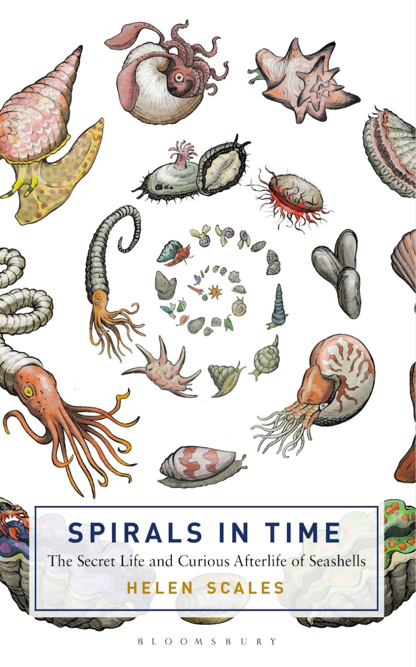 Spirals-in-Time-small