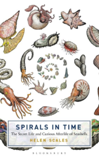 bbbook_spiralsintime