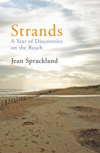 bbbook_strands