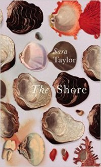 bbbook_theshore