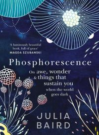bbbook_phosphorescene