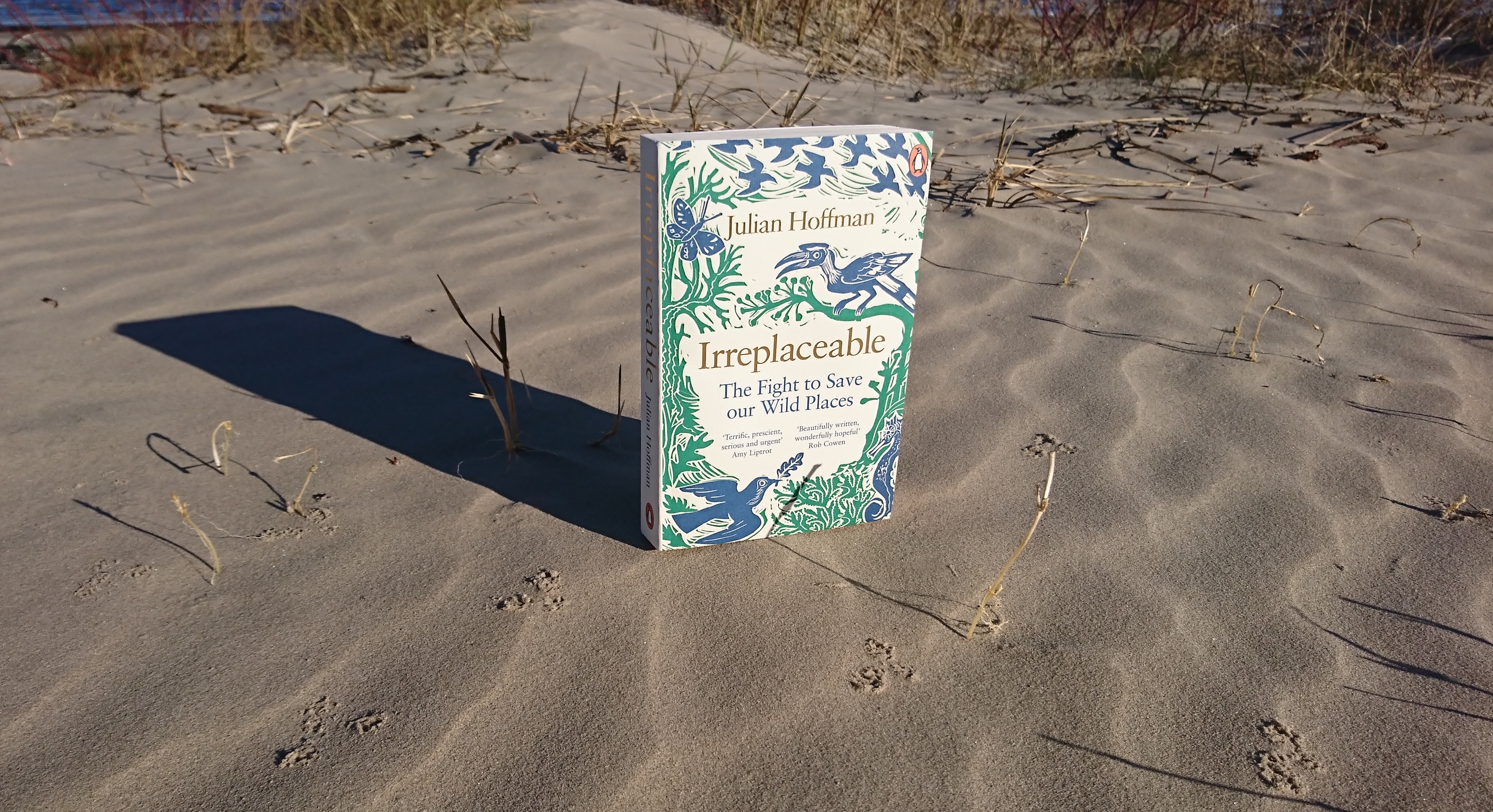 """Irreplaceable: The Fight to Save our Wild Places"" by Julian Hoffman. Photo: Beach Books."
