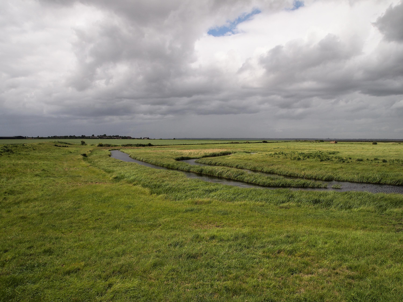 The marsh country, Hoo Peninsula, Kent. Photo: Julian Hoffman.